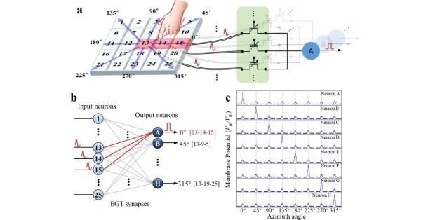 微电子所氧化物电解质栅控晶体管研究取得进展