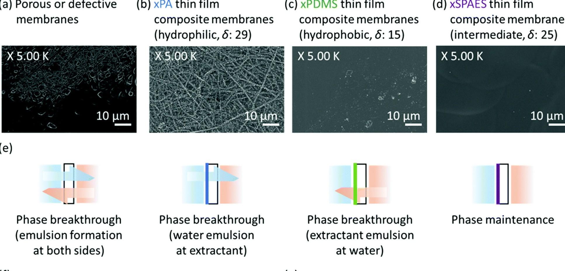 ICL研究人员开发基于膜的新型系统,以廉价高效地制造生物燃料