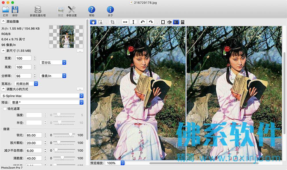 专业的图片无损缩放软件PhotoZoom Pro 中文专业版