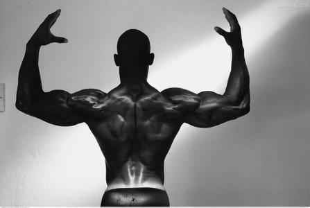 健肌粉、蛋白粉品牌测评-追梦健身网