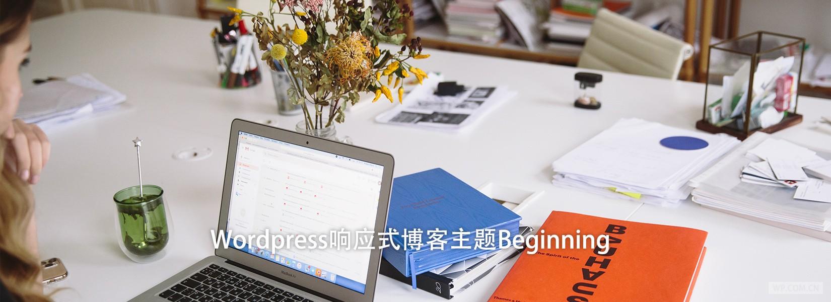 Wordpress响应式博客主题Beginning