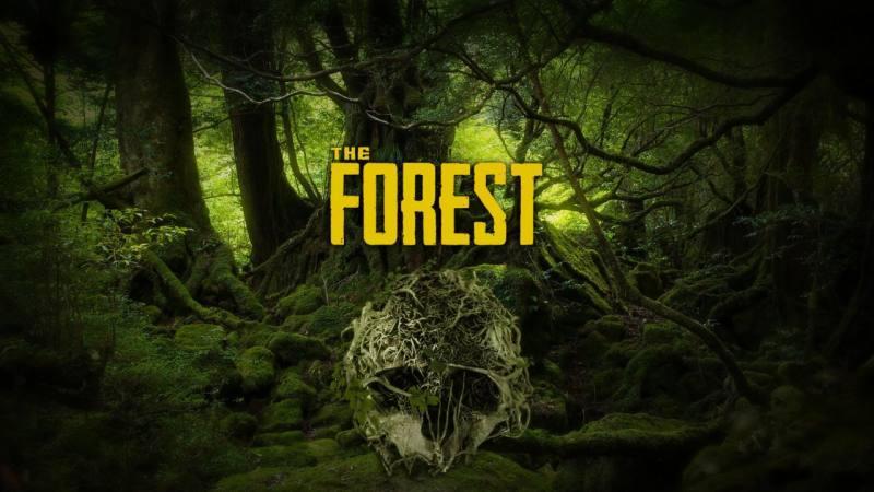 迷失森林 局域网+网络联机版/支持单机